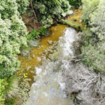 Using Panoramic Photos & Aerial Photo/Video to Showcase a Revegetation Project